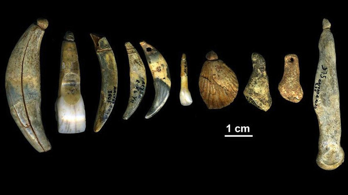 Los neandertales y el arte de adornar el cuerpo