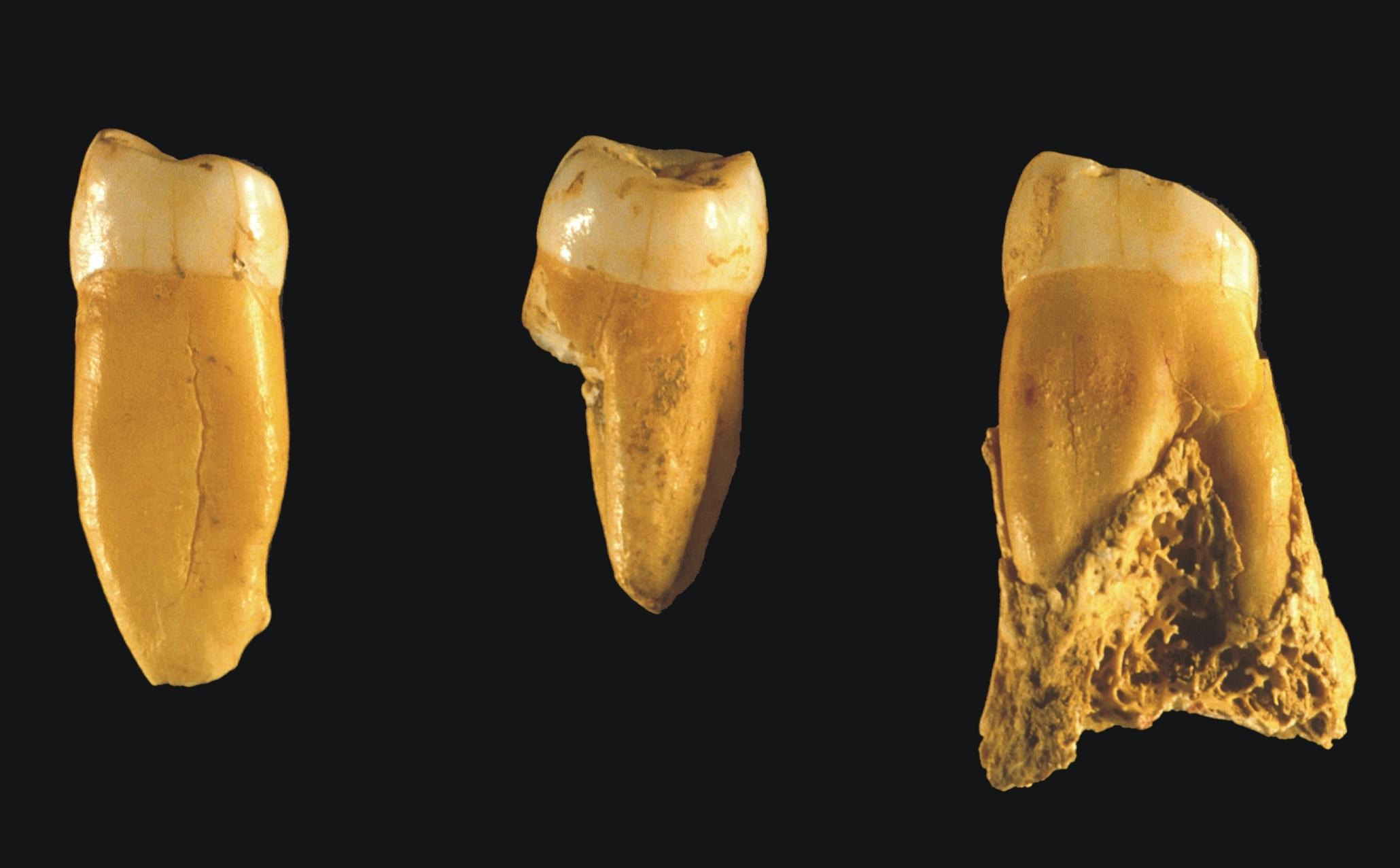 Axlor y los neandertales del País Vasco